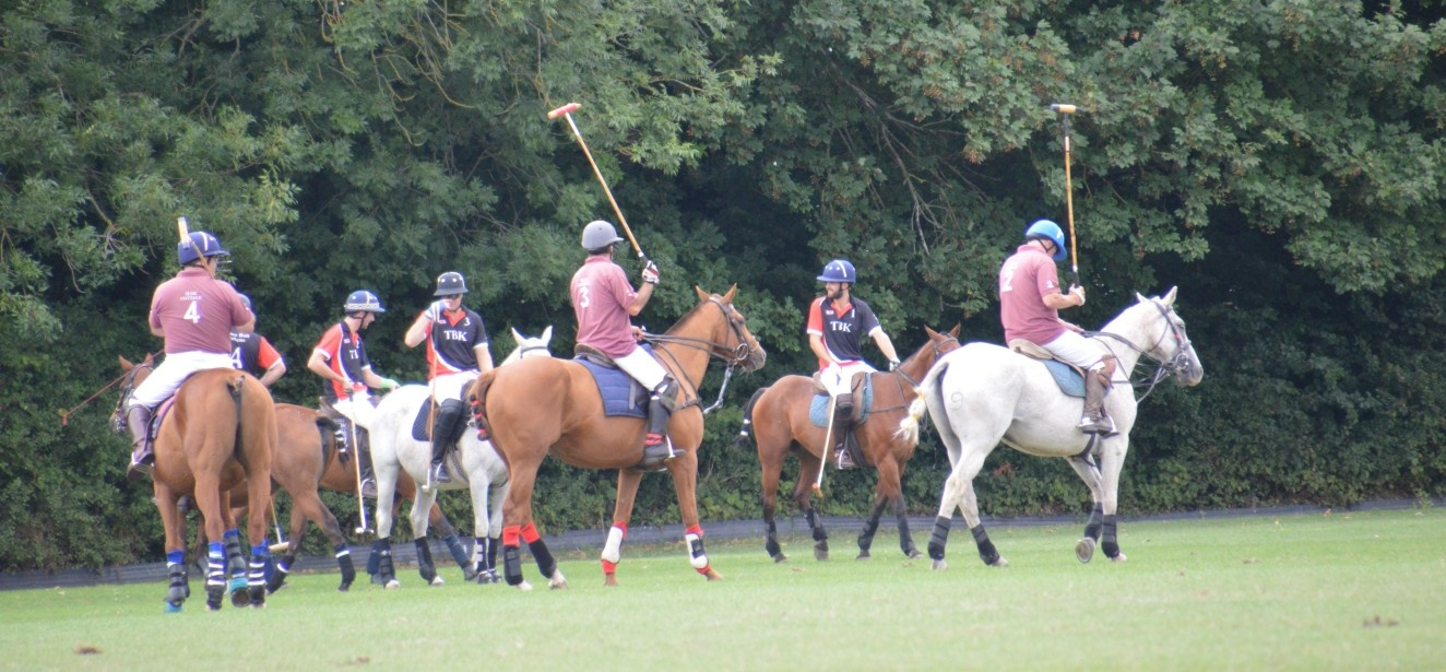 Full Day Introduction to Polo, Somerset-1