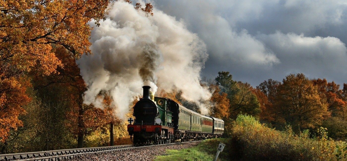Bluebell Railway Trip and Wakehurst Place for Two-1