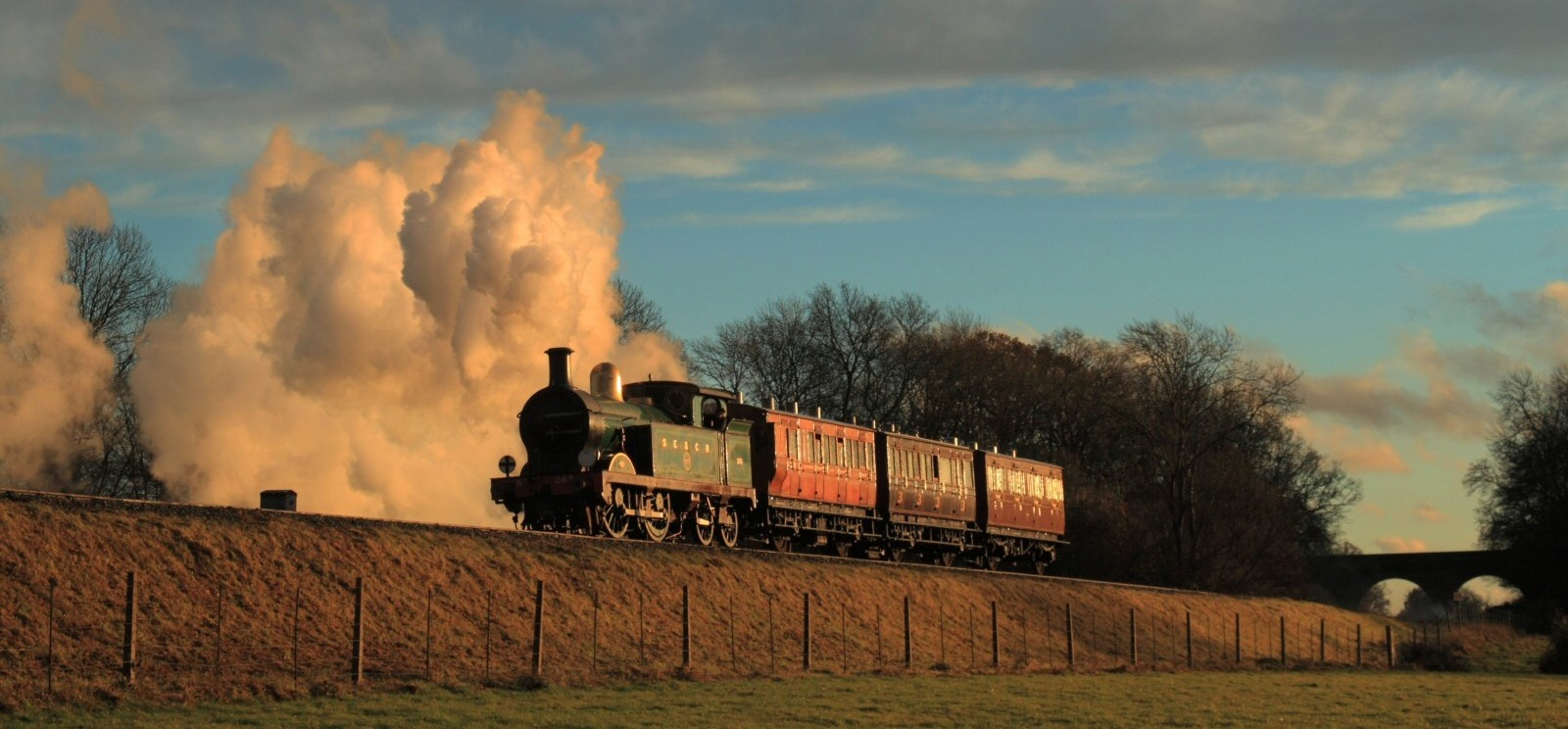 Bluebell Railway Trip and Wakehurst Place for Two-4