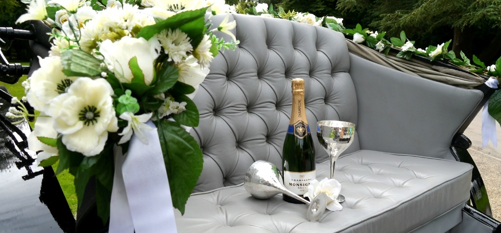 Sussex Champagne Picnic Horse Drawn Carriage Ride for Two-3
