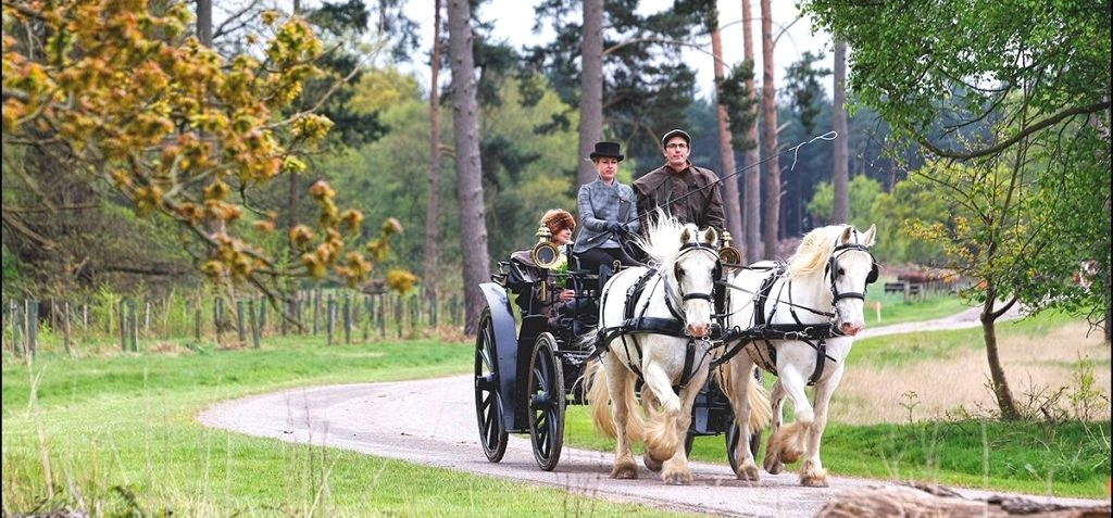 Sussex Champagne Picnic Horse Drawn Carriage Ride for Two-1