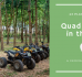 43 Places to Go Quad Biking in the UK (A Geographic Guide)