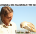 Staff Review: Warwickshire Falconry Experience
