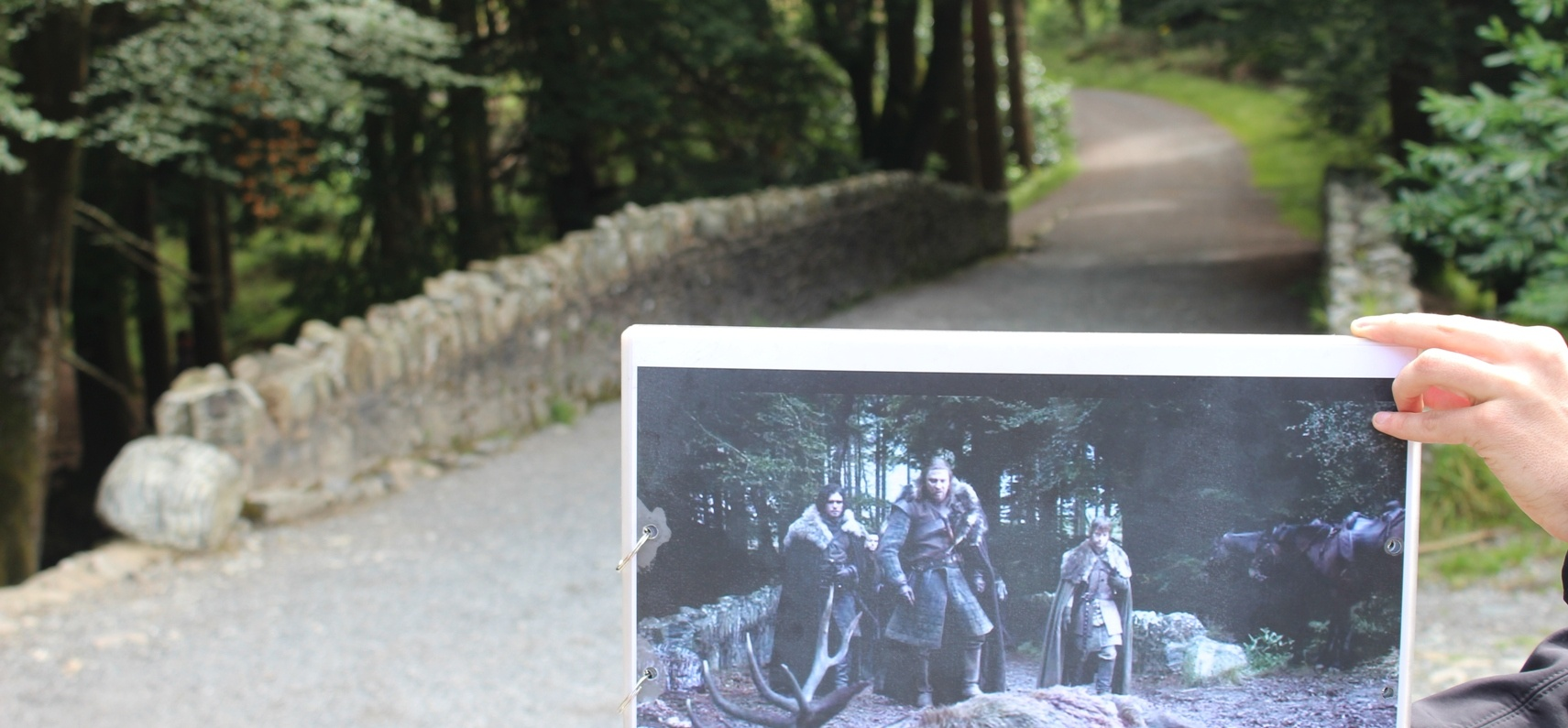 Game Of Thrones Tour with Dire Wolves and Castle Ward - Belfast-3
