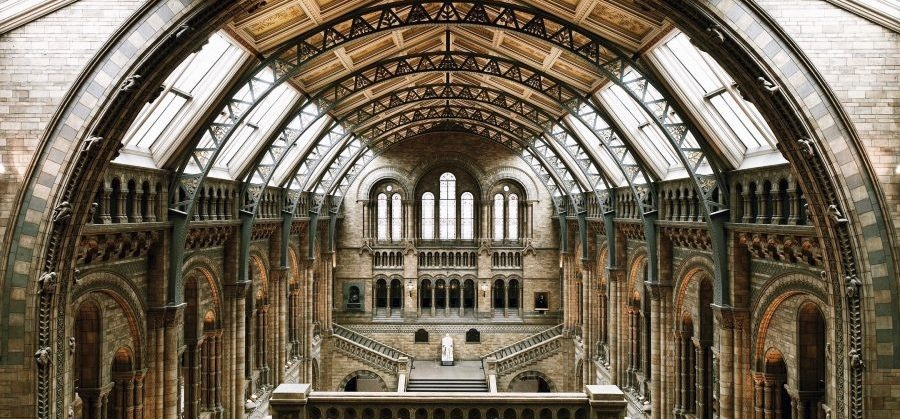 Guided Tour of The Natural History Museum-1