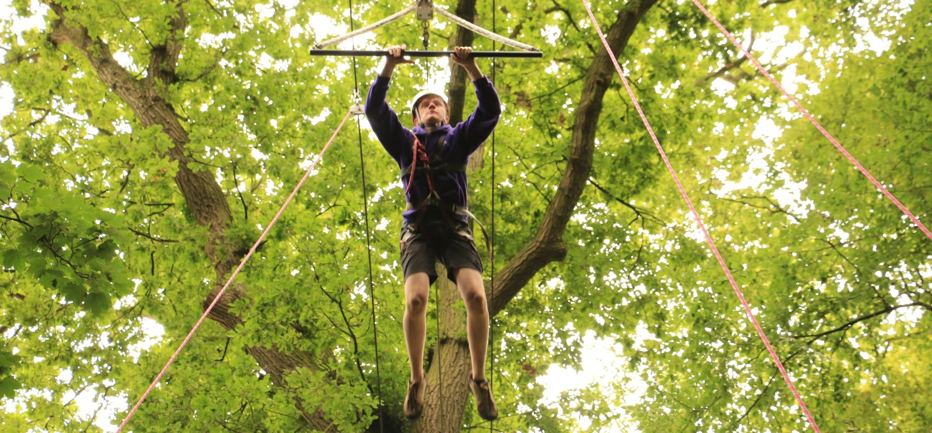 High Ropes Woodland Experience For 2-5
