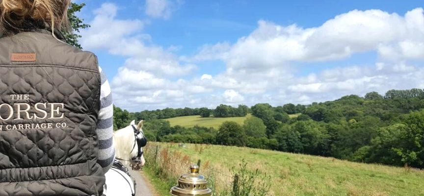 Sussex Champagne Picnic Horse Drawn Carriage Ride for Two-4