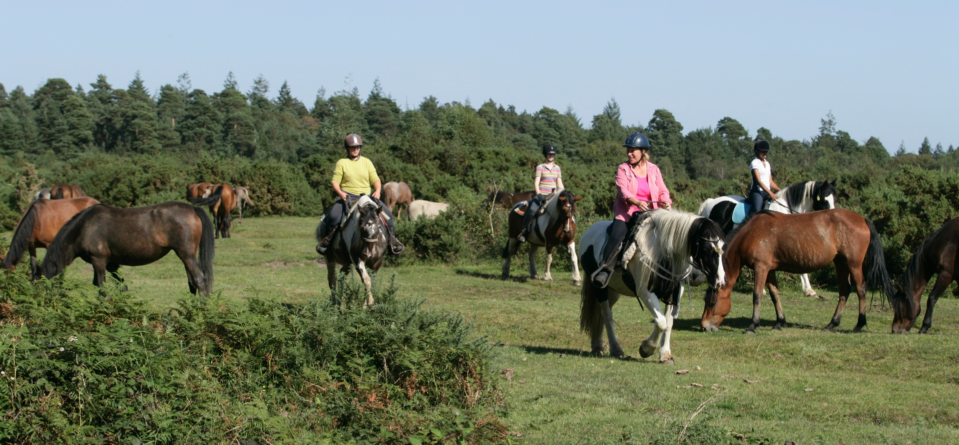 90 Minute Western Horse Riding Trail - Hampshire-1