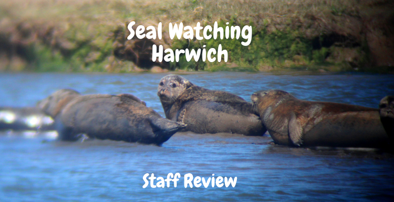 Seal Watching Harwich.png
