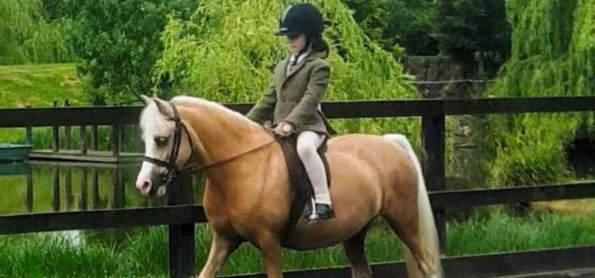 30 Minute Horse Riding Experience - Surrey-1