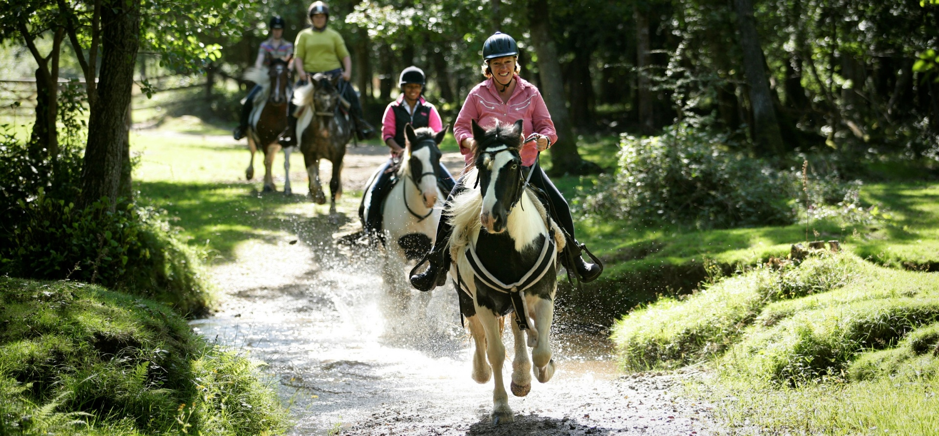 90 Minute Western Horse Riding Trail - Hampshire-3