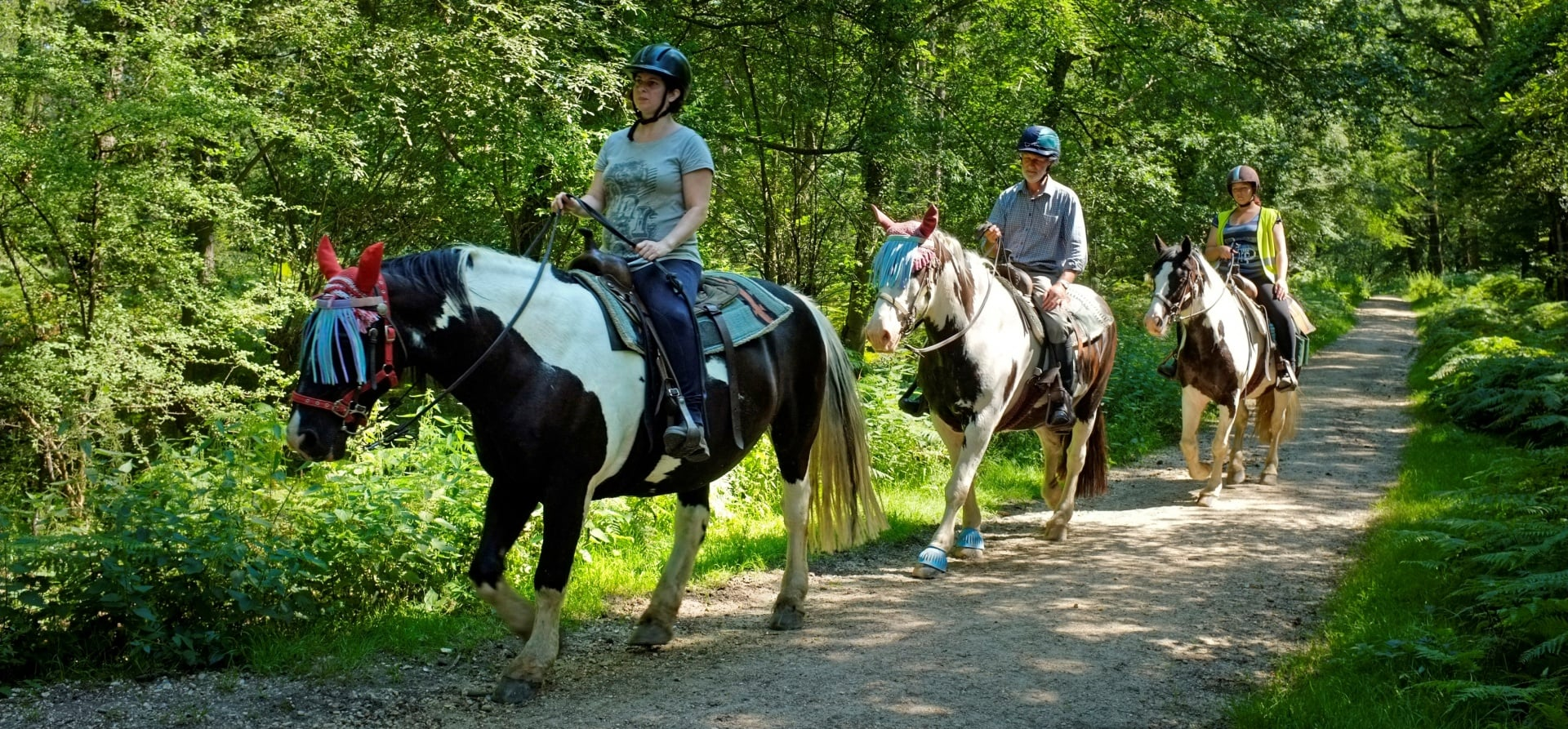 Two Hour Western Horse Riding Trail And Lunch - Hampshire-5