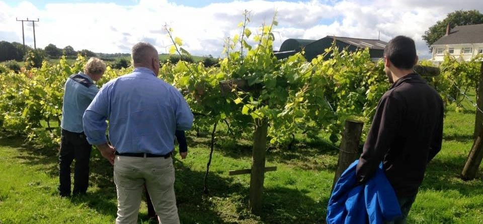 Shropshire Cheese And Wine Tour For Two-2