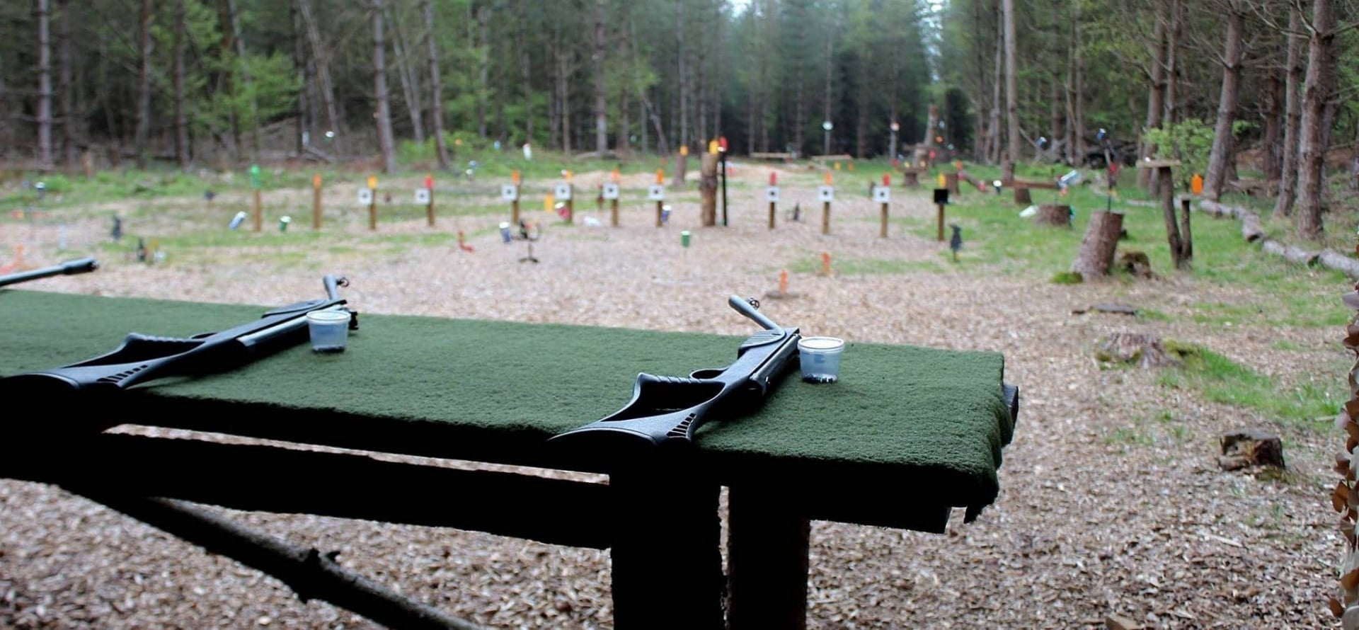 Air Rifle and Pistol Shooting Experience in Sussex-1