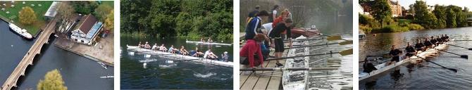 Crew Rowing Header