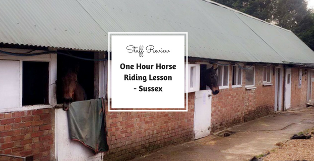 One Hour Horse Riding Lesson with Ellenwhorne Equestrian Centre In Sussex