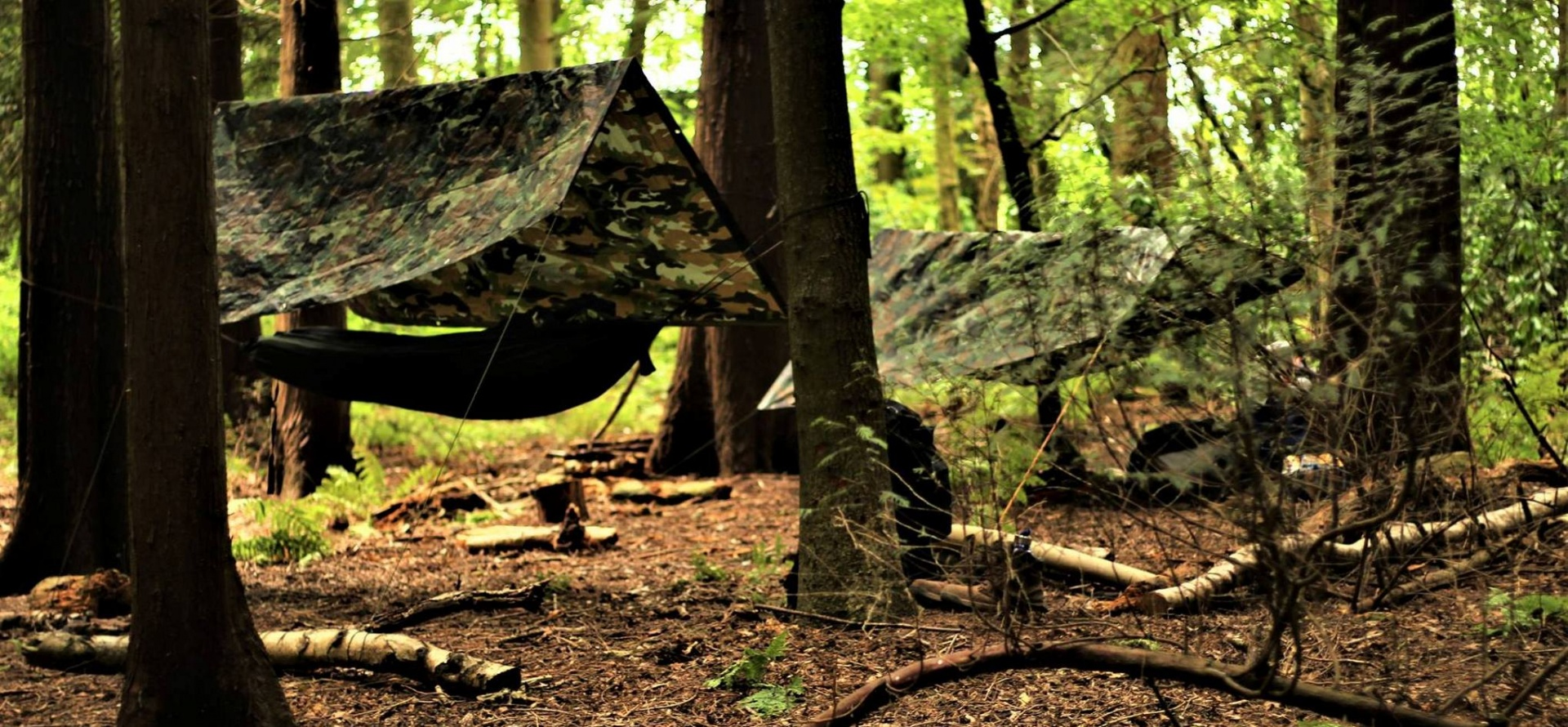 2 Day Bushcraft And Survival Course In Shropshire