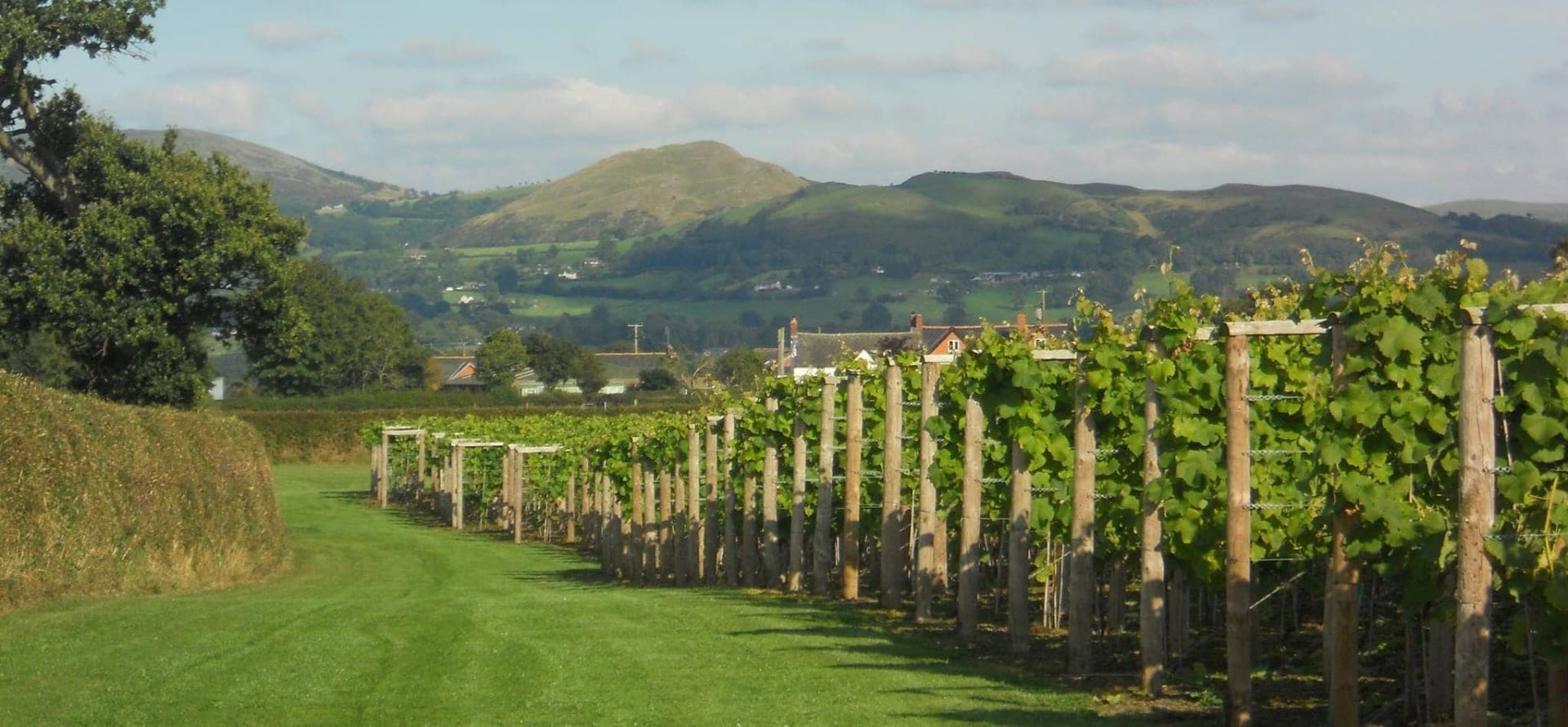 Shropshire Cheese And Wine Tour For Two-1