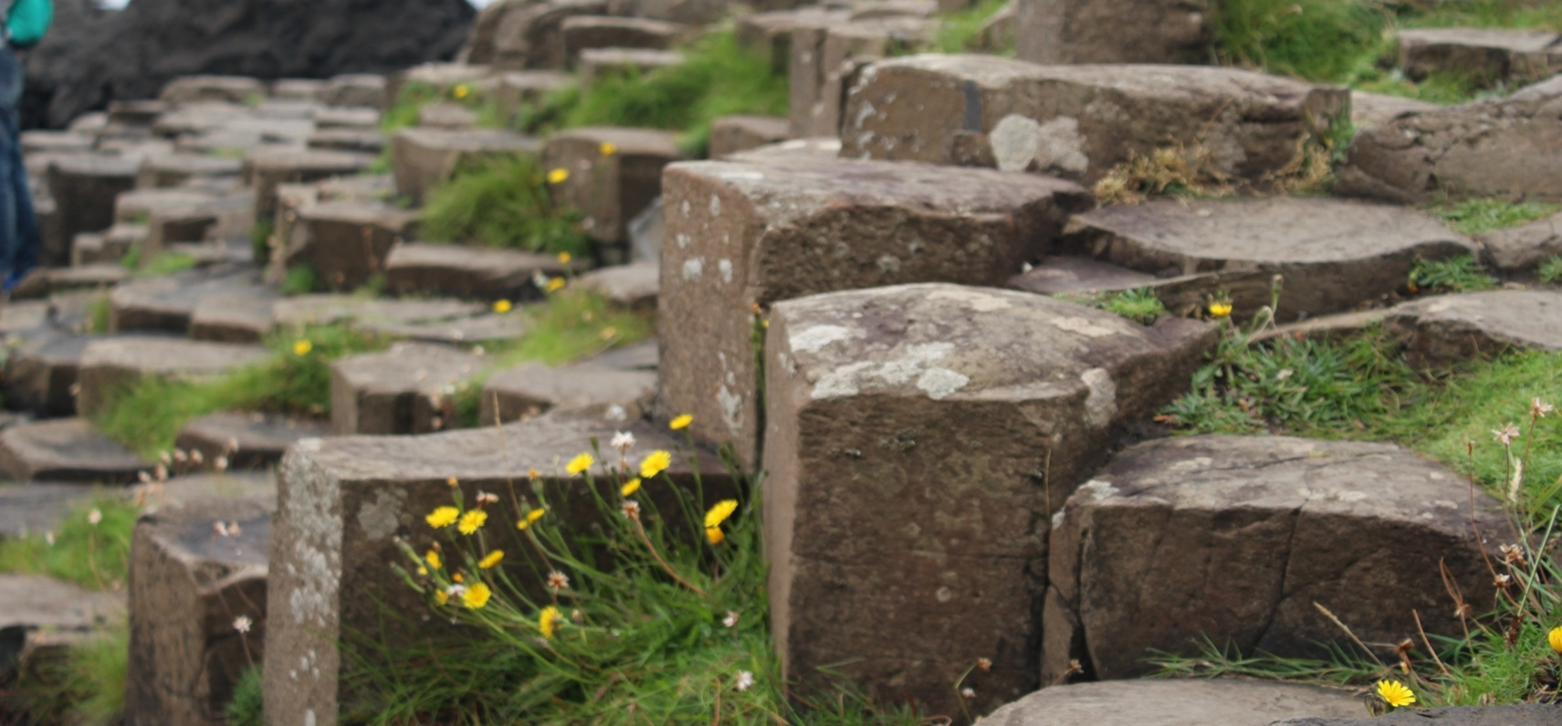 Game of Thrones Tour with Giant's Causeway - Belfast-2