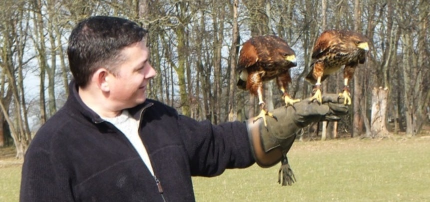 Private Falconry Experience North Wales-5