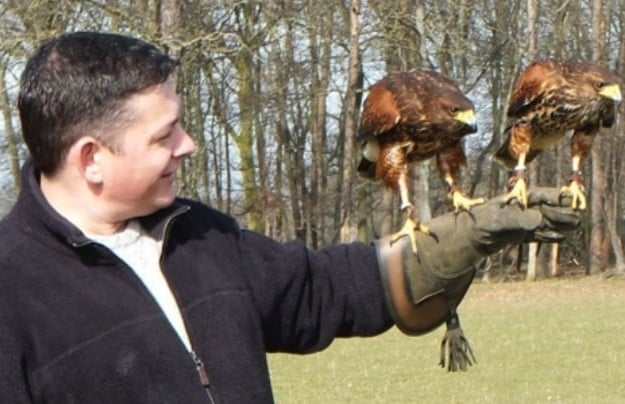 falconry-experience-for-2-wales.jpg