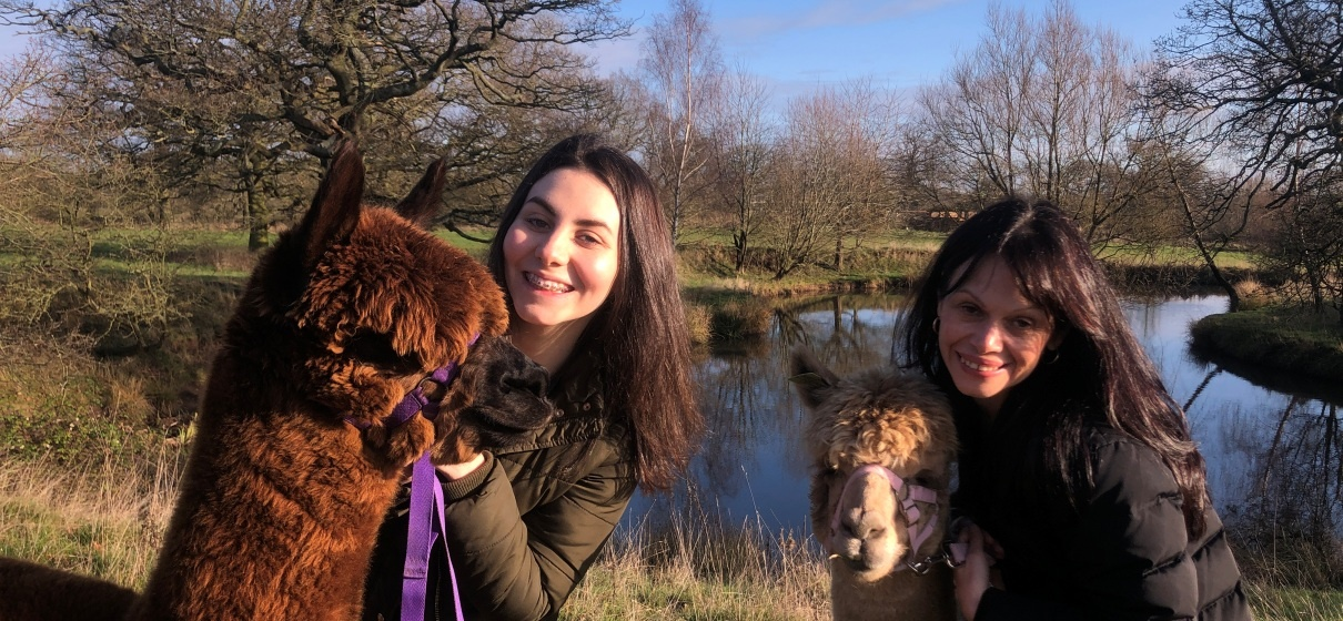 Parent and Child Alpaca Experience for 2 in Warwickshire-3