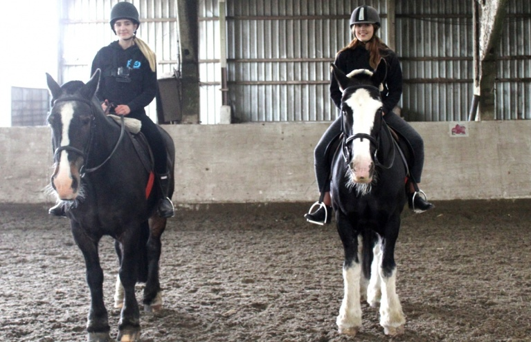 horse riding experience in hampshire interns day out.jpg