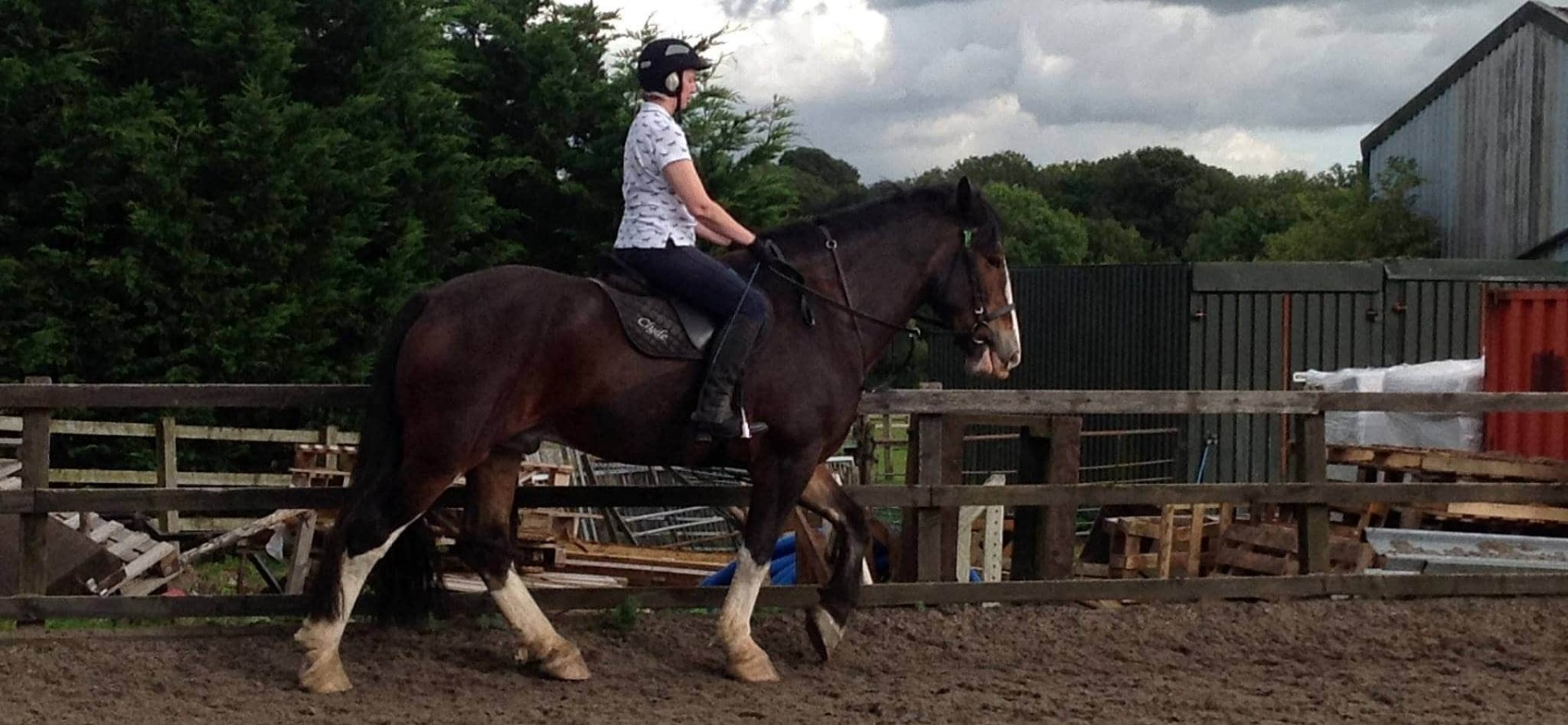Horse Riding in Hampshire - Advanced Lesson-2