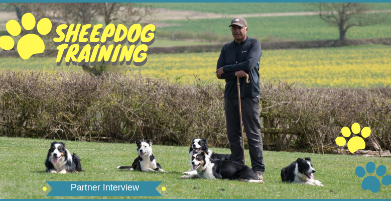 Partner Interview: Nij Vyas Sheepdog Training