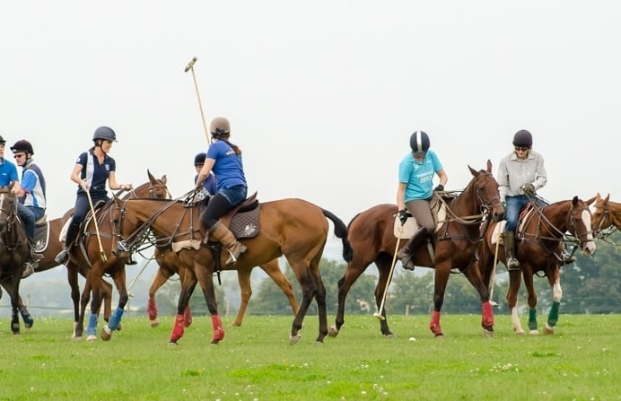 polo-experience-in-hampshire.jpg