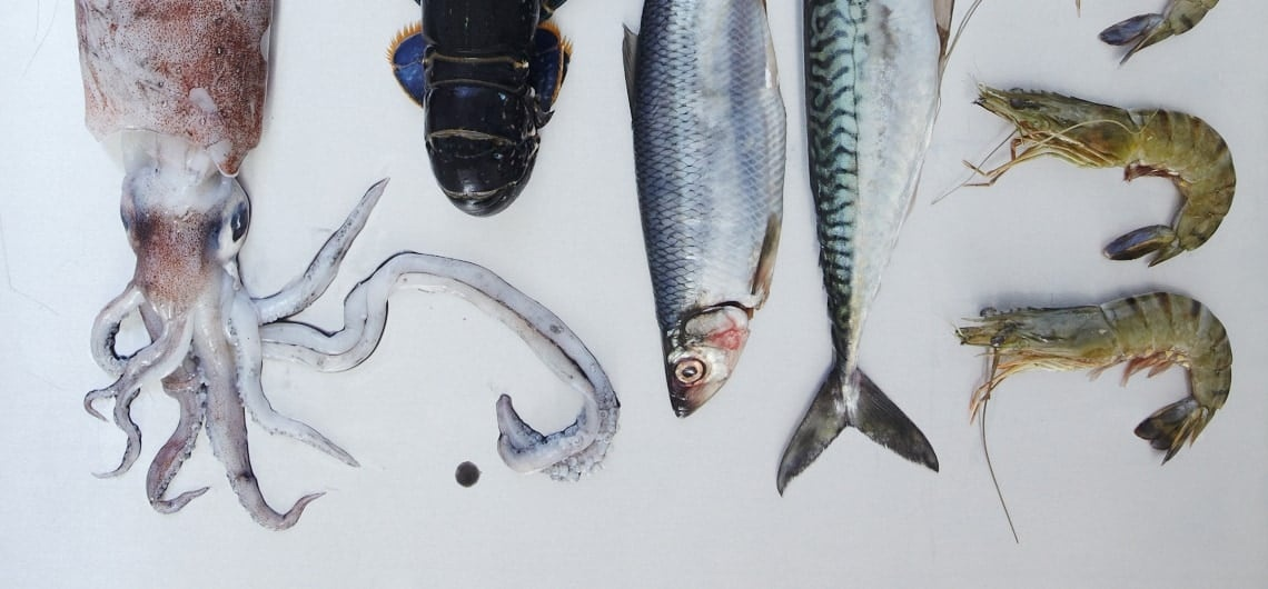 The Ultimate Fish And Shellfish Cookery Course London