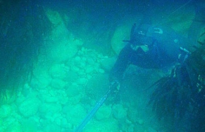 spearfishing-experience-in-dorset.jpg