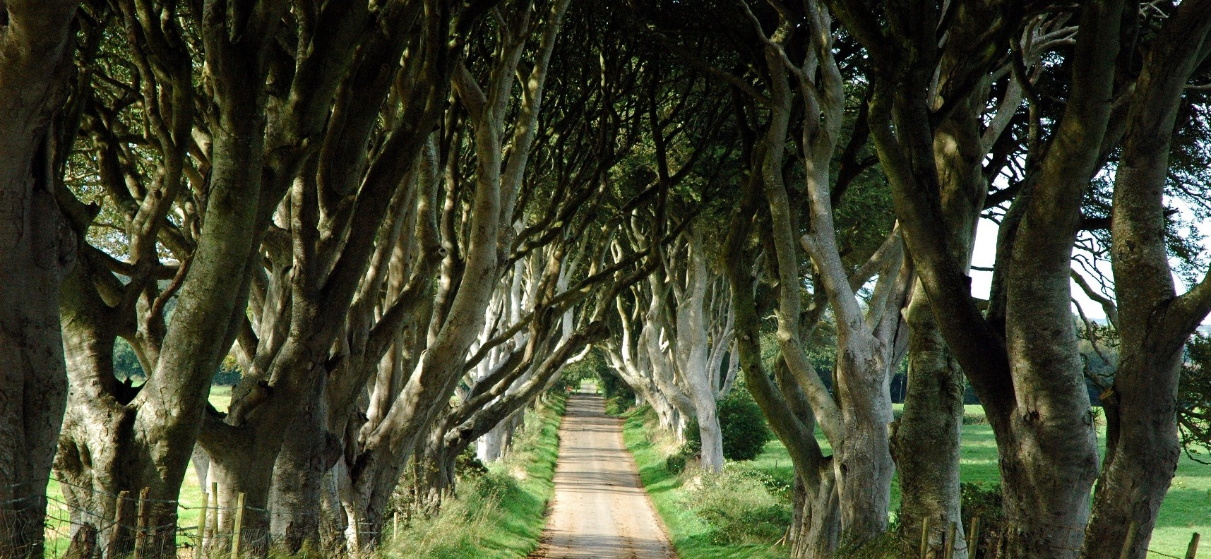 Game of Thrones Tour with Giant's Causeway - Belfast-5