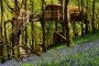 /images/treehouse-experience-for-two-in-wales-1920x1080-resize.jpeg