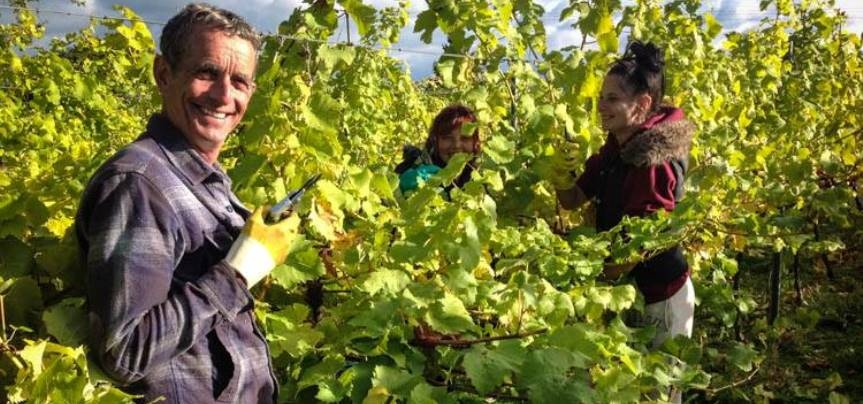 East Sussex Vineyard Tour With Lunch For 3
