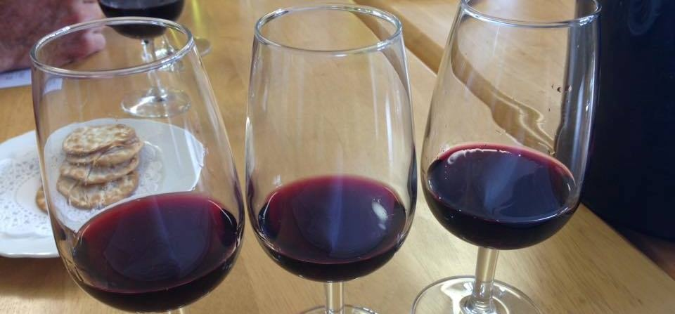 Shropshire Vineyard Tour And Wine Tasting For Two-4